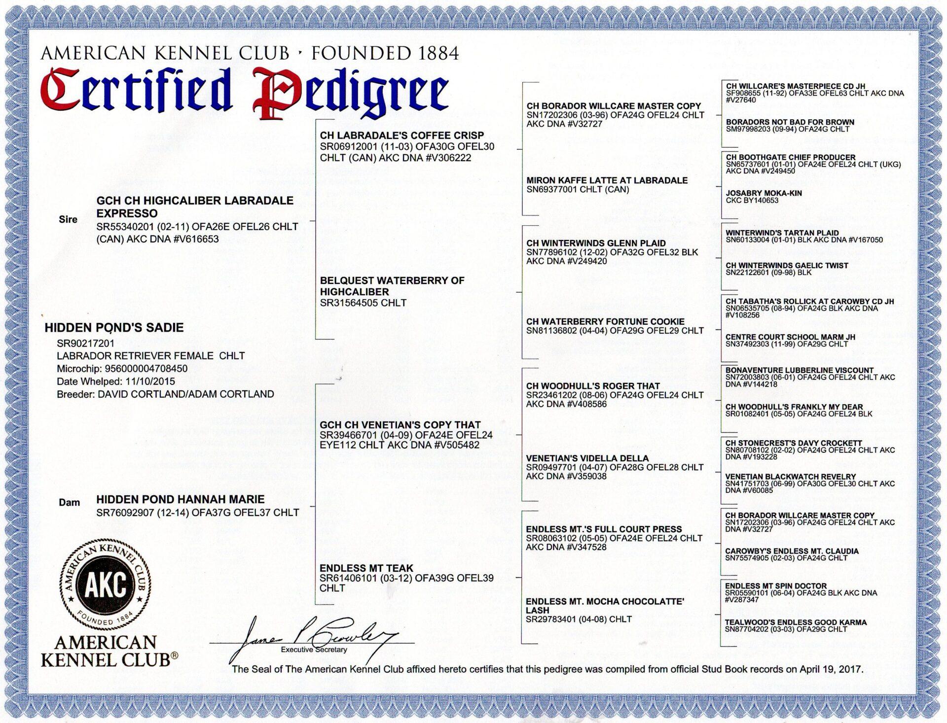 AKC Certified Pedigree Certificate