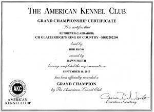 AKC Grand Championship Certificate
